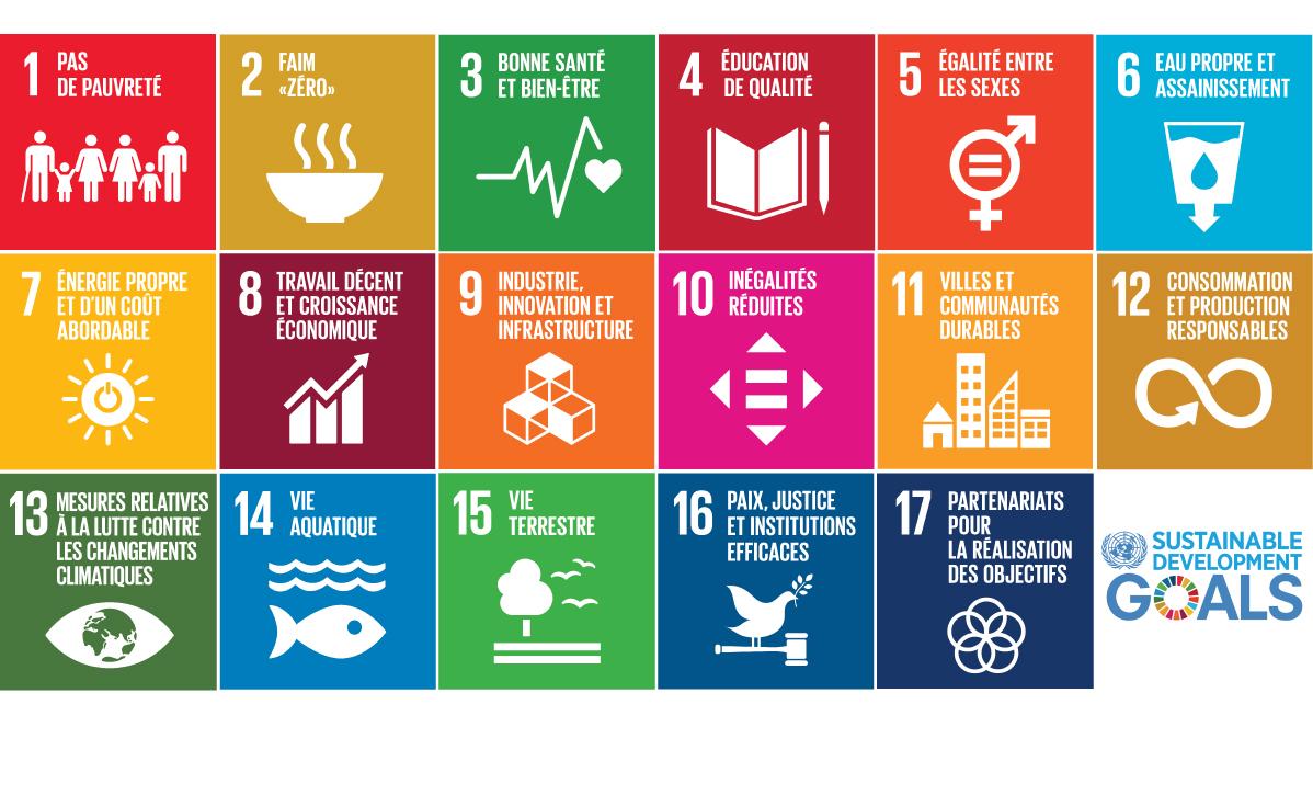 Sustainable Development Goals support marketing