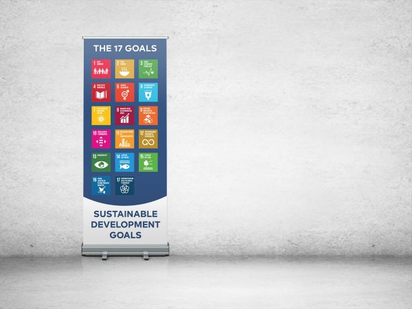 roll up SDG
