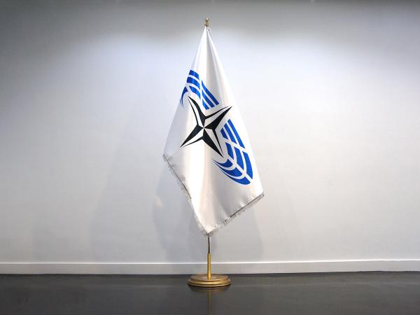 Protocol flags: doublesided satin flag with silver fringes