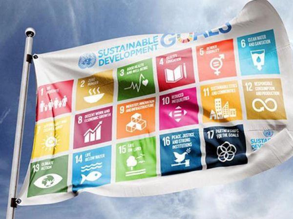 SDG vlag spandoek